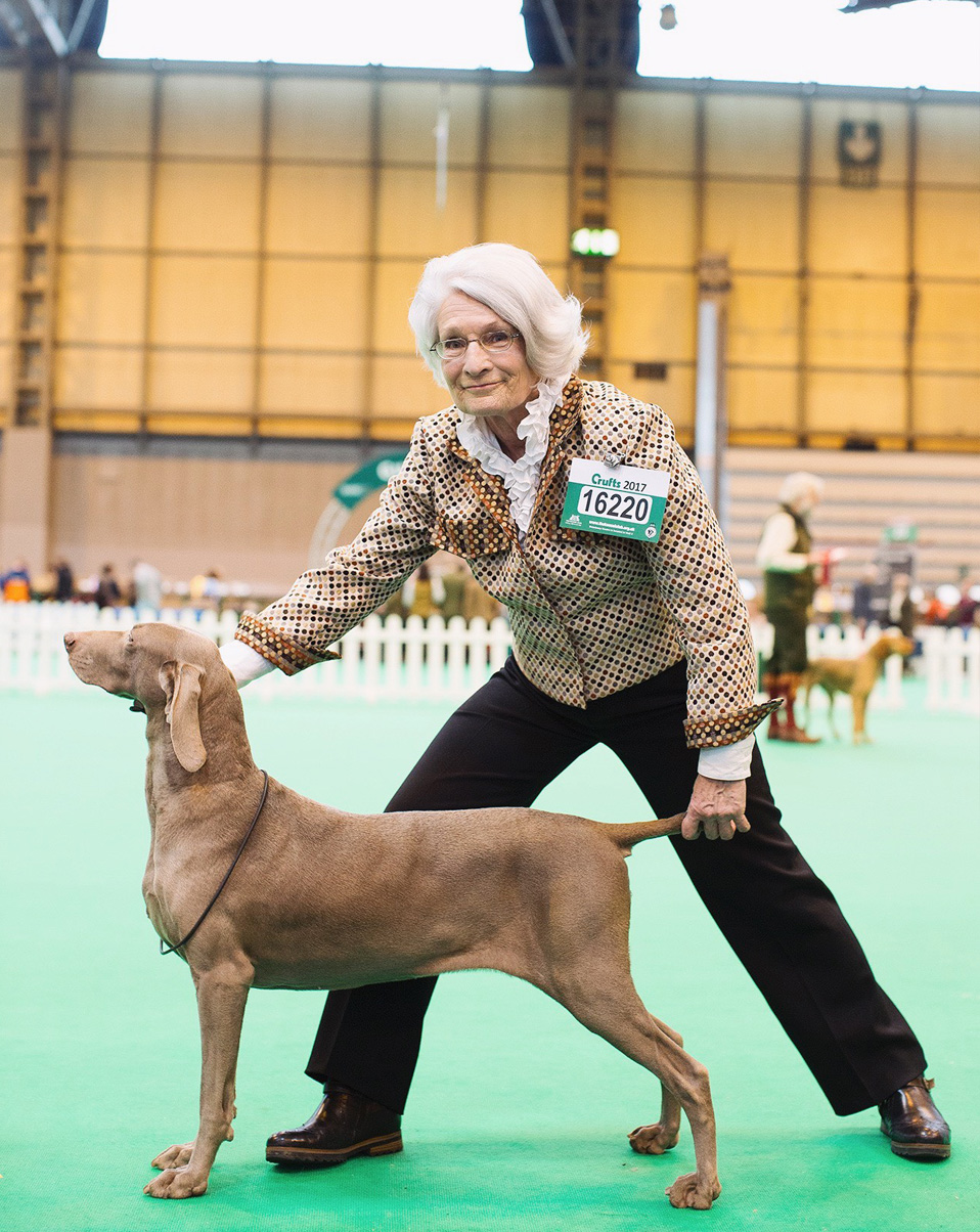 Crufts Dog Show. Vice.