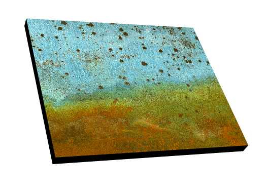 #81 Archival InkJet print on canvas with black edge.