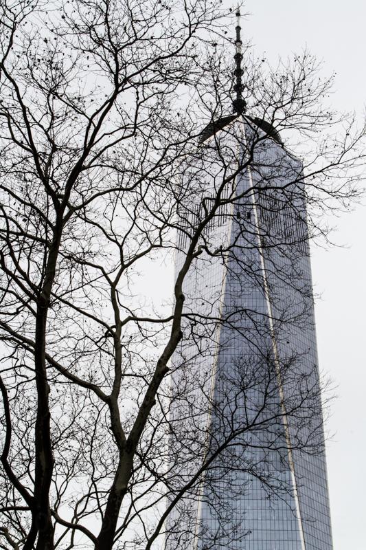 1712 Freedom Tower-2.jpg
