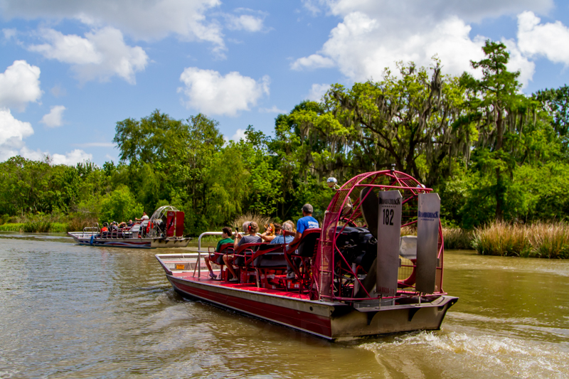1803 MSY swamp-4.jpg