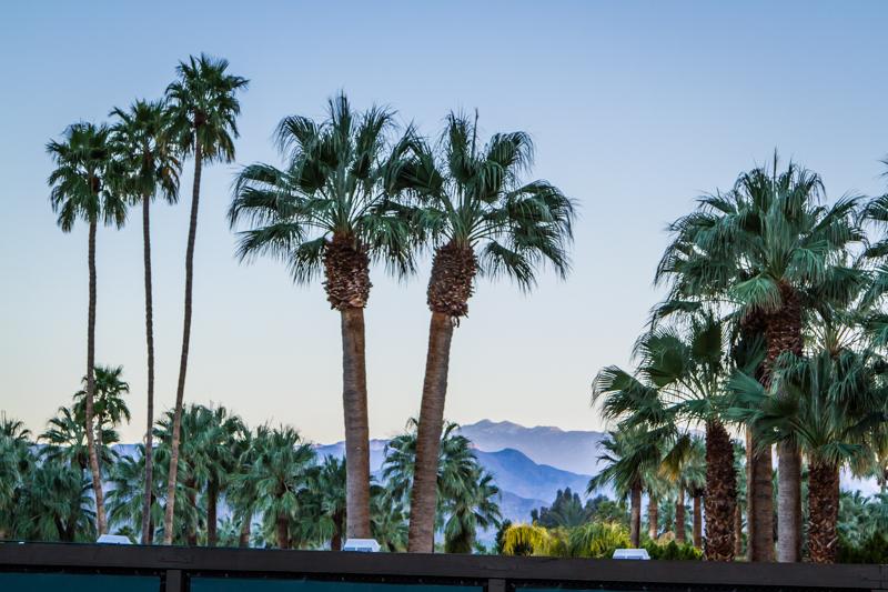 Palm Springs at dusk. J. STANFORD