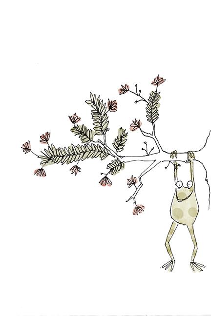 treefrog72.jpg