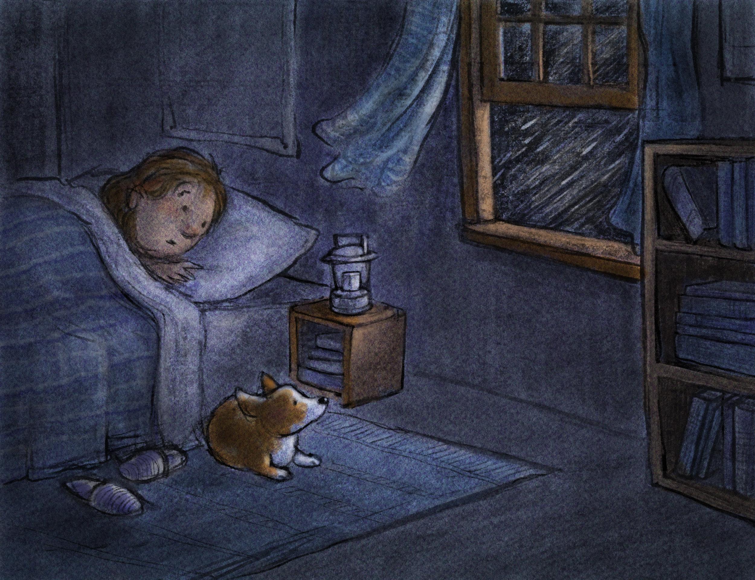 CAT_018.jpg