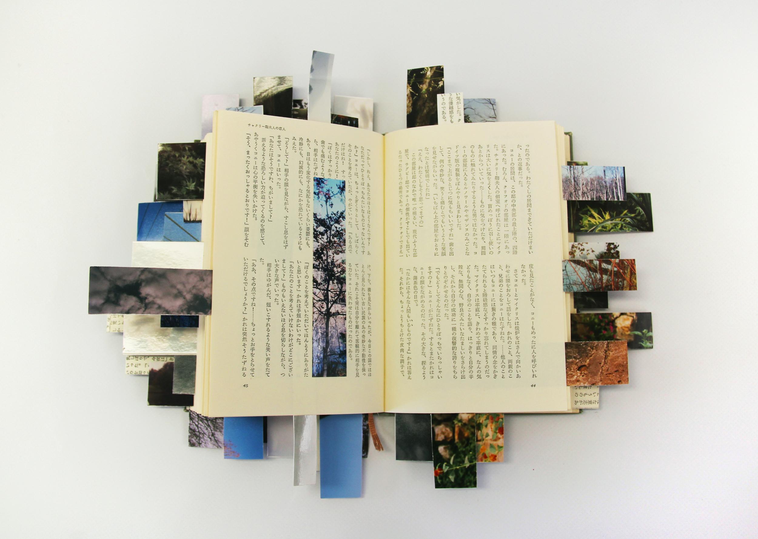 JuliaNelsonGal_GreetingsFromKalamazoo,Book1_FoundBookFoundPhotos_12x12inches.jpg