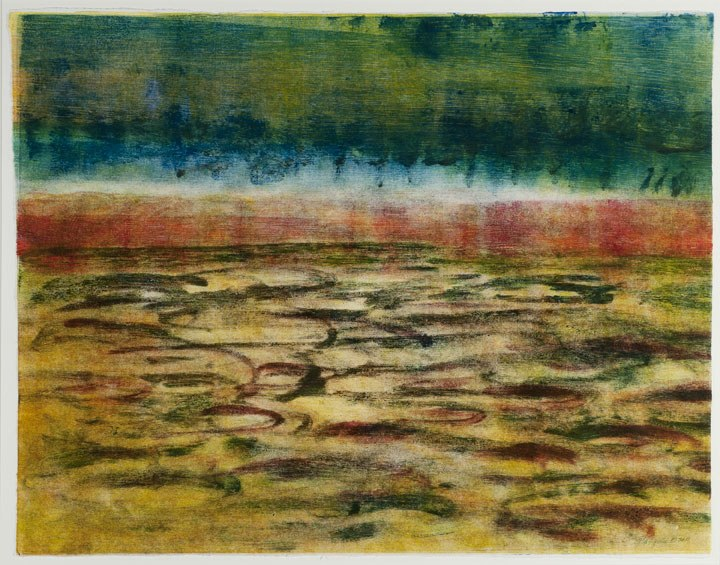 "Taylor Creek   , 2011   monotype   18   7/8  "" x 24"""