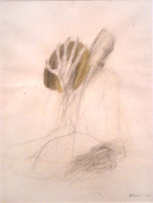 """The Journey    ,  1992   graphite and acrylic on paper/parchment   32  1/2  """" x 26  1/2  """""""