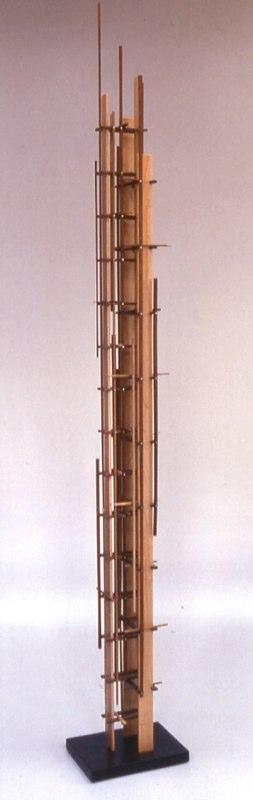 "Mondrain Form    ,  2002   various woods   71"" x 7  1/4  "" x 10"""