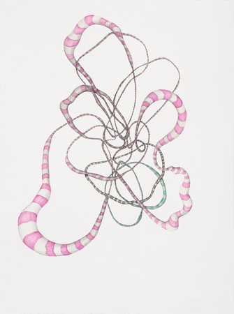 """Julia Fernandez-Pol  """"Anguilliformes,"""" 2009  ink on paper  34 1/4"""" x 26 3/4"""""""
