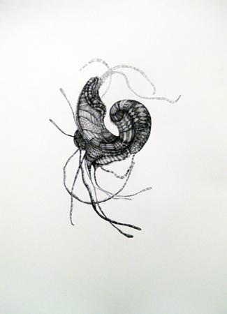 "Julia Fernandez-Pol  ""Decapod,"" 2009  ink on paper  30 1/4"" x 24 1/4"""