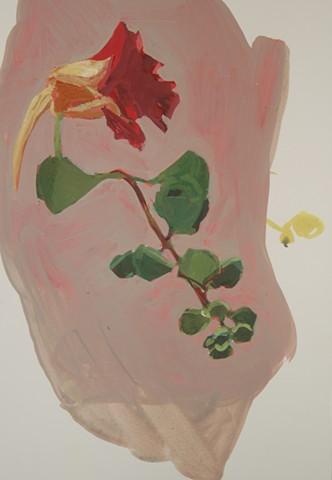 """Red Nasturtium  , 2014  gouache on paper  17"""" x 13 1/2 """""""