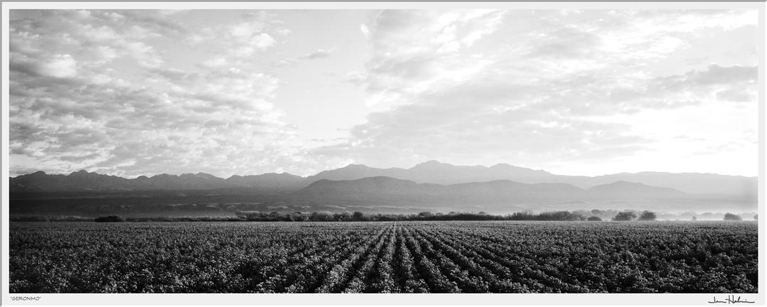 """""""Geronimo,"""" 2007  black and white photograph, print #2  25 1/8"""" x 47 1/8"""""""