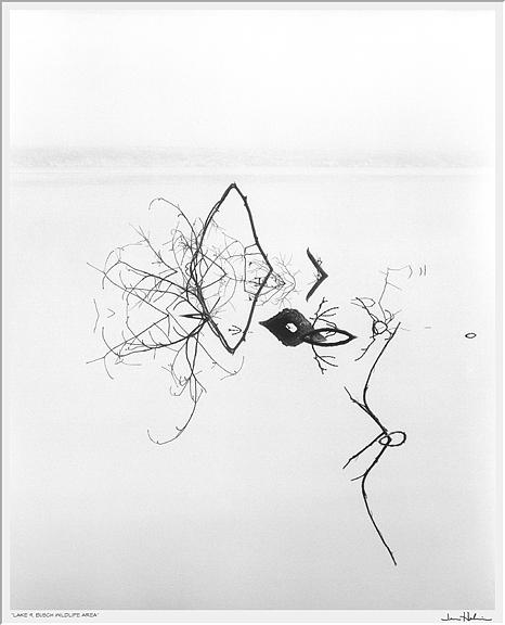 """Lake 9, Busch Wildlife Area,"" 2007  black and white photograph, print #33  29 1/8"" x 25 1/8"""