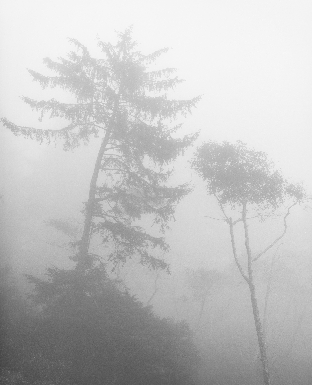 """Ruby Beach Illusion,"" 2003  black and white photograph, print #2  29 1/8"" x 25 1/8"""