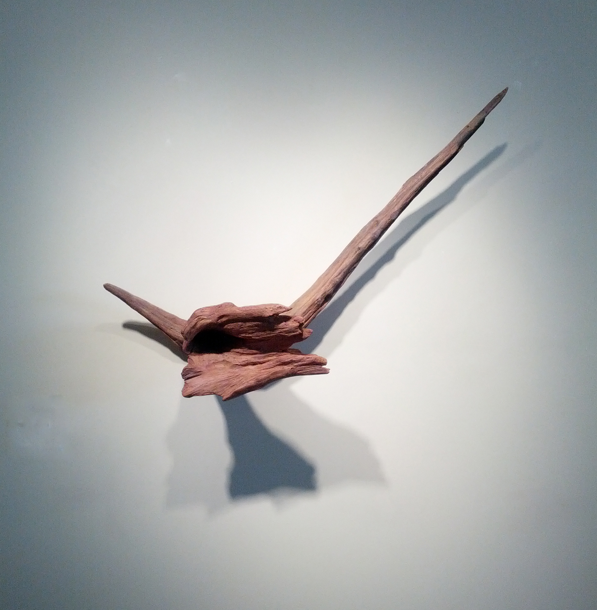 "Jane Schneider, ""Flora,"" 2000  wood and mixed media  18"" x 37 1/2"" x 8"""
