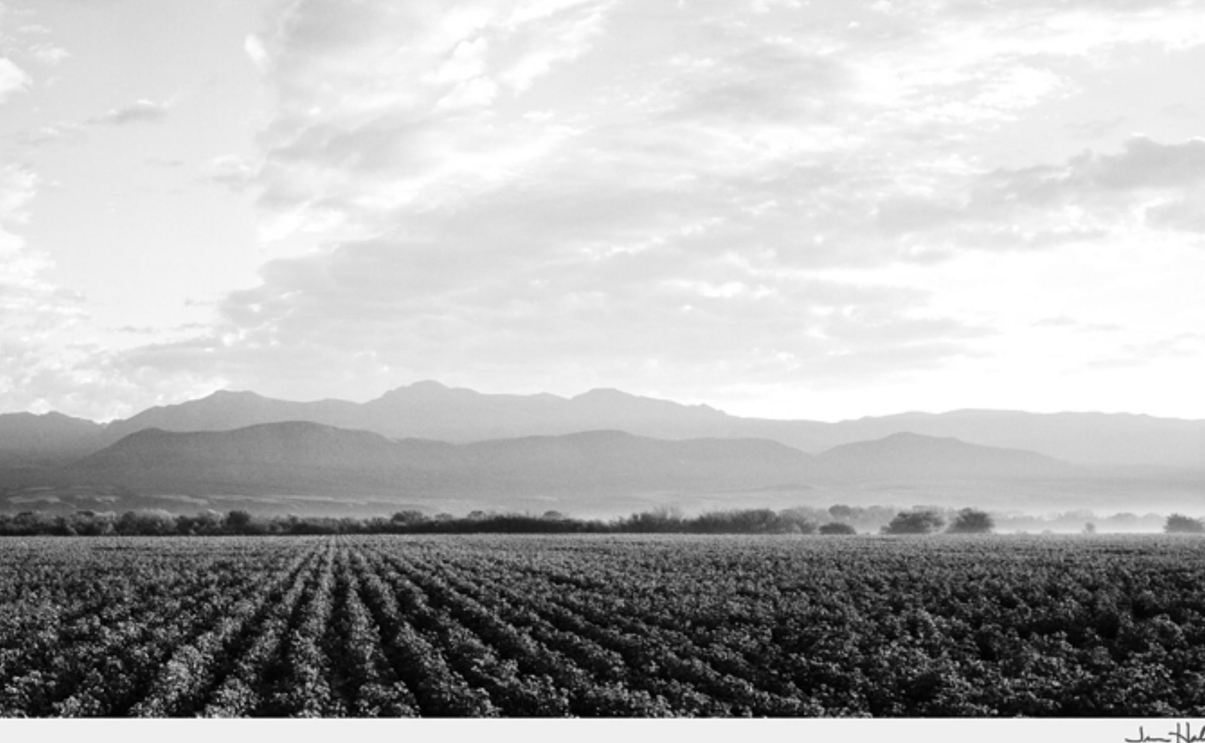 """Jerome Hawkins, Geronimo , 2007, black and white photo, 25 1/8"""" x 47 1/8"""""""