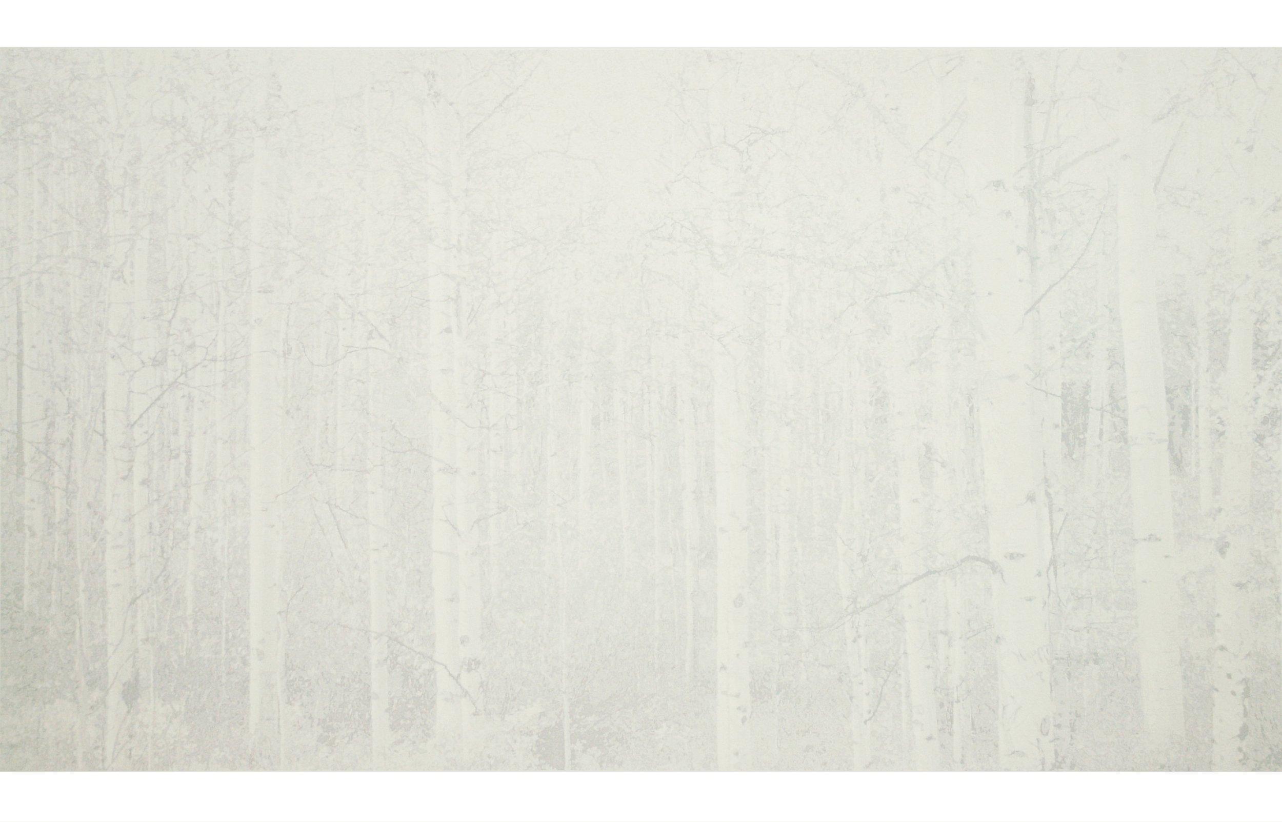 """Cameron Martin  (BIO)  ,   Balentane  , 2012, lithograph, 22 11/16"""" x 35 1/4"""""""