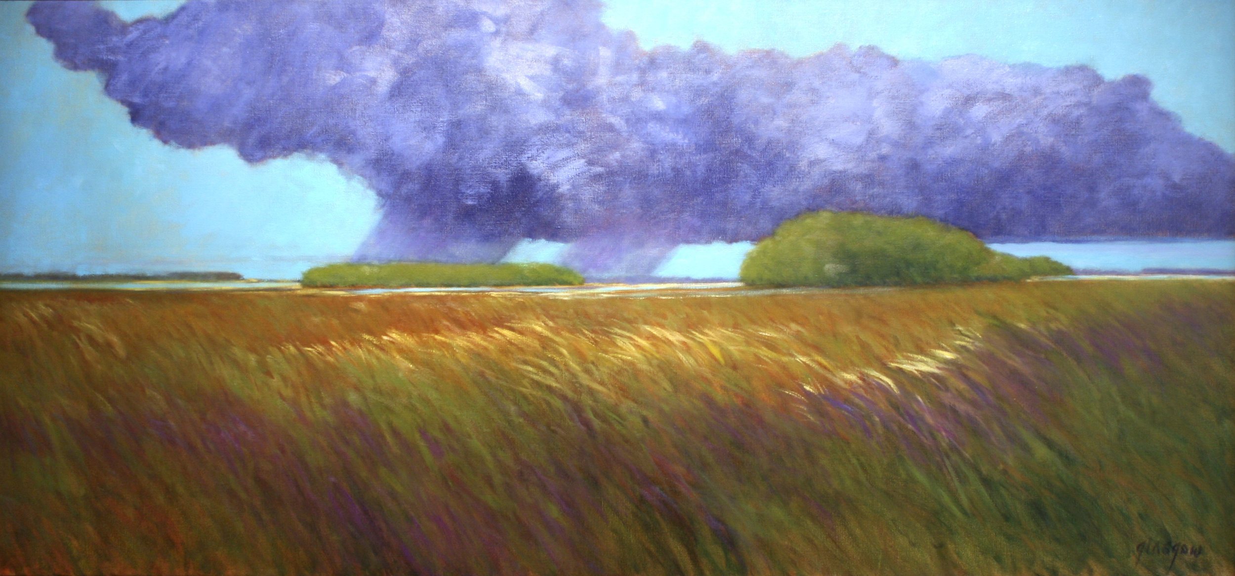 "Ellen Glasgow  (BIO) ,   Hatteras Storm  , 2011, oil on linen, 29 1/8"" x 61 1/8"""