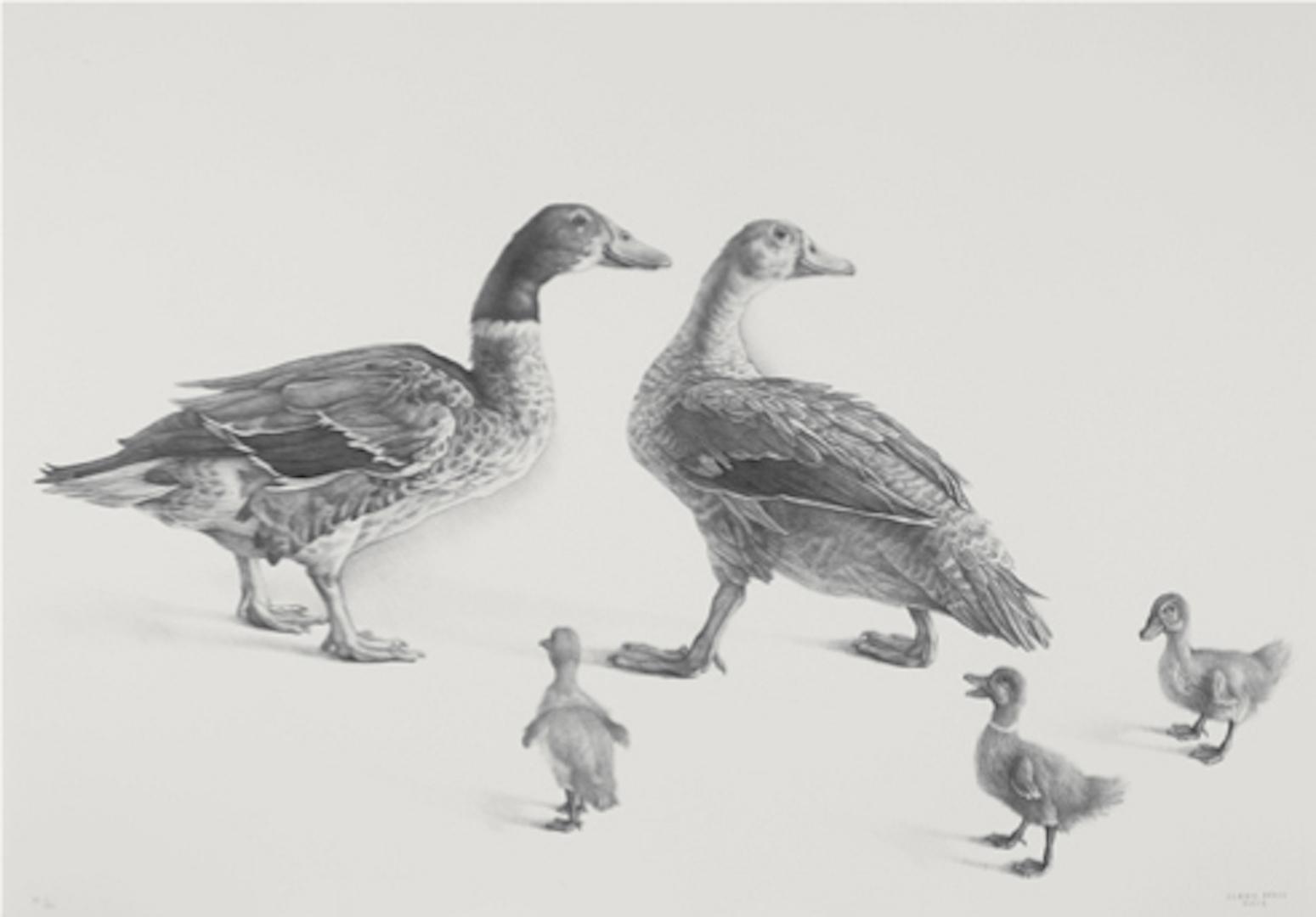 "Cladio Bravo, ""Familia de gansos (Family of Geese),"" 2008 lithograph 1/51"