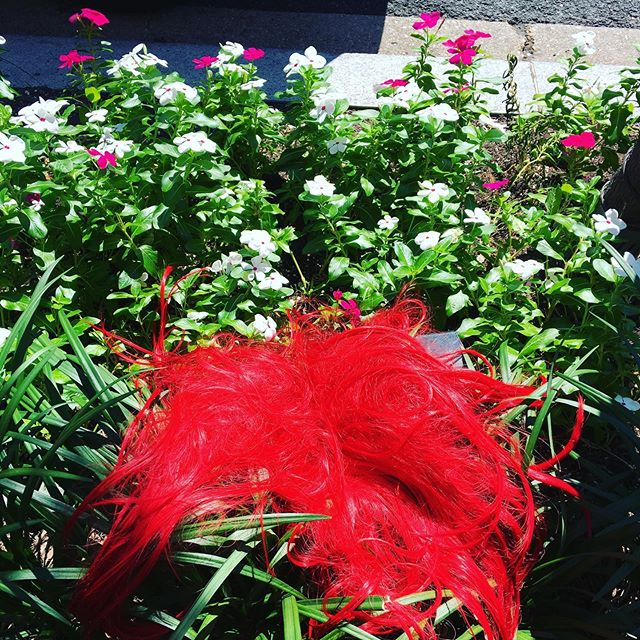 Your red wig called. It's in Georgetown, getting back to nature.