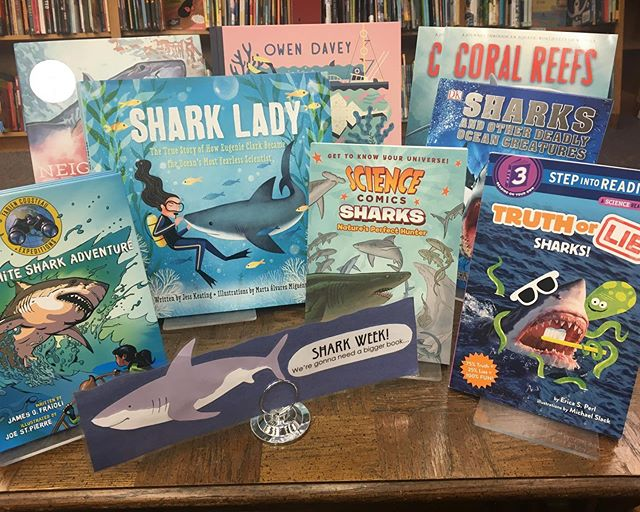JAWSome Shark Week display at @politicsprose. Swim on in! #gonnaneedabiggerbook