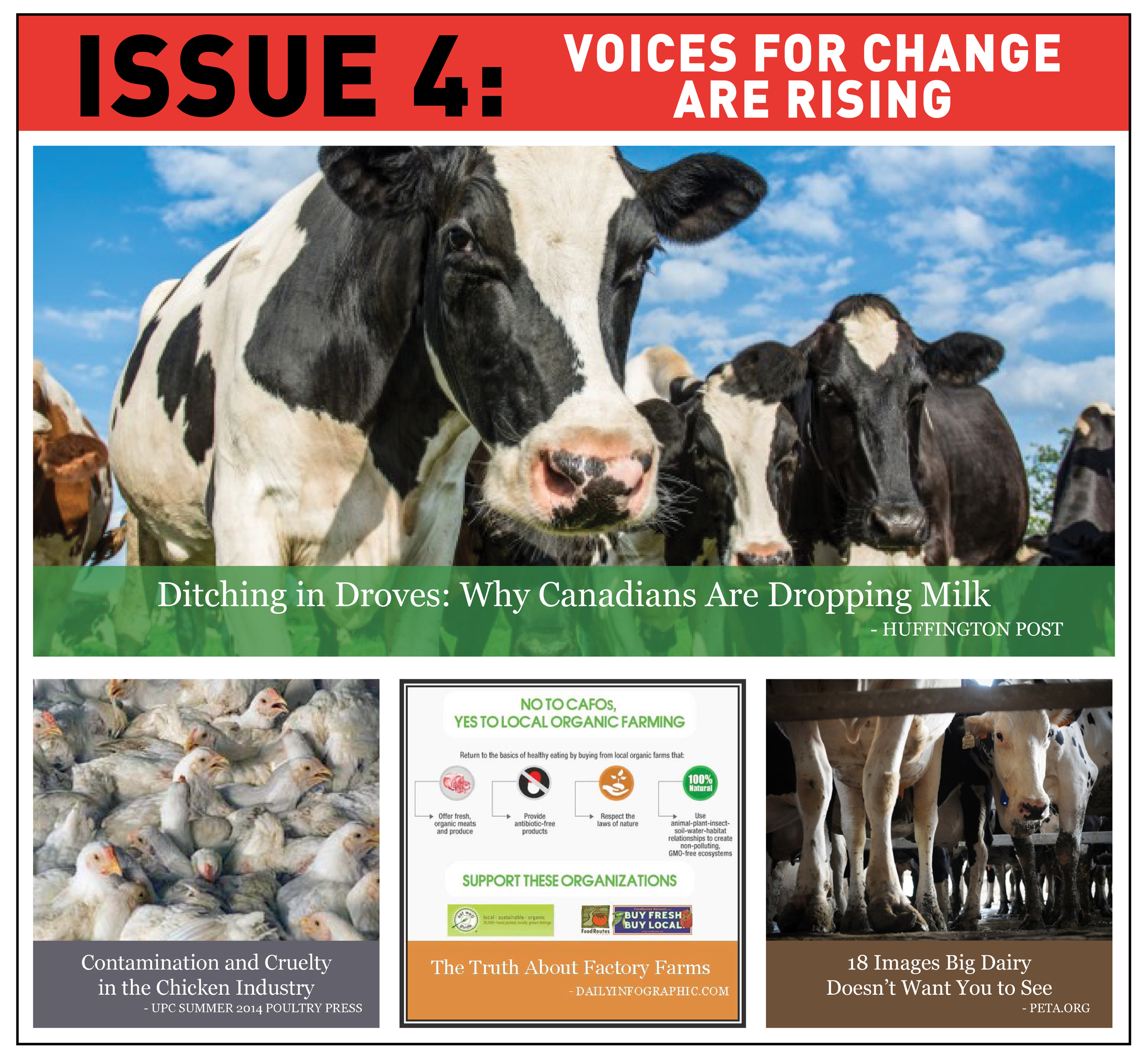 faCE Issue 4 - VOICES FOR CHANGE ARE RISING