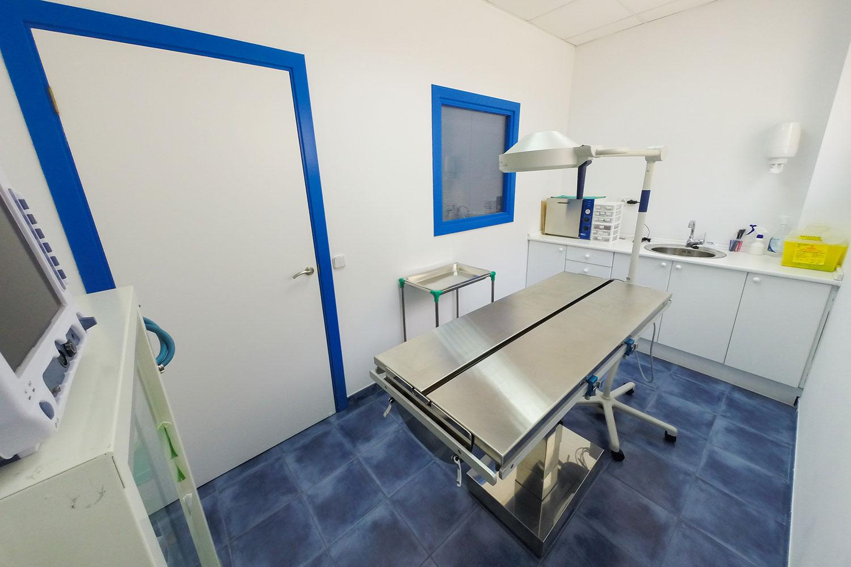 clinica_veterinaria_el_parc_palma_de_mallorca_doctor_martin_lanyi_3.jpg