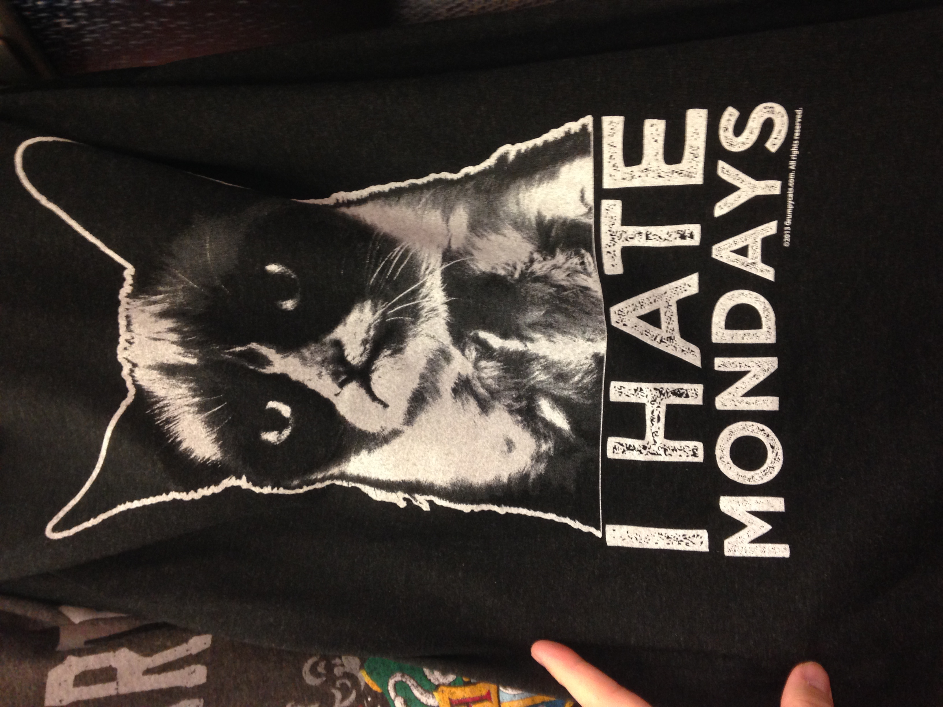 While working in the mens department I saw this Grumpy Cat short. I do agree with him.