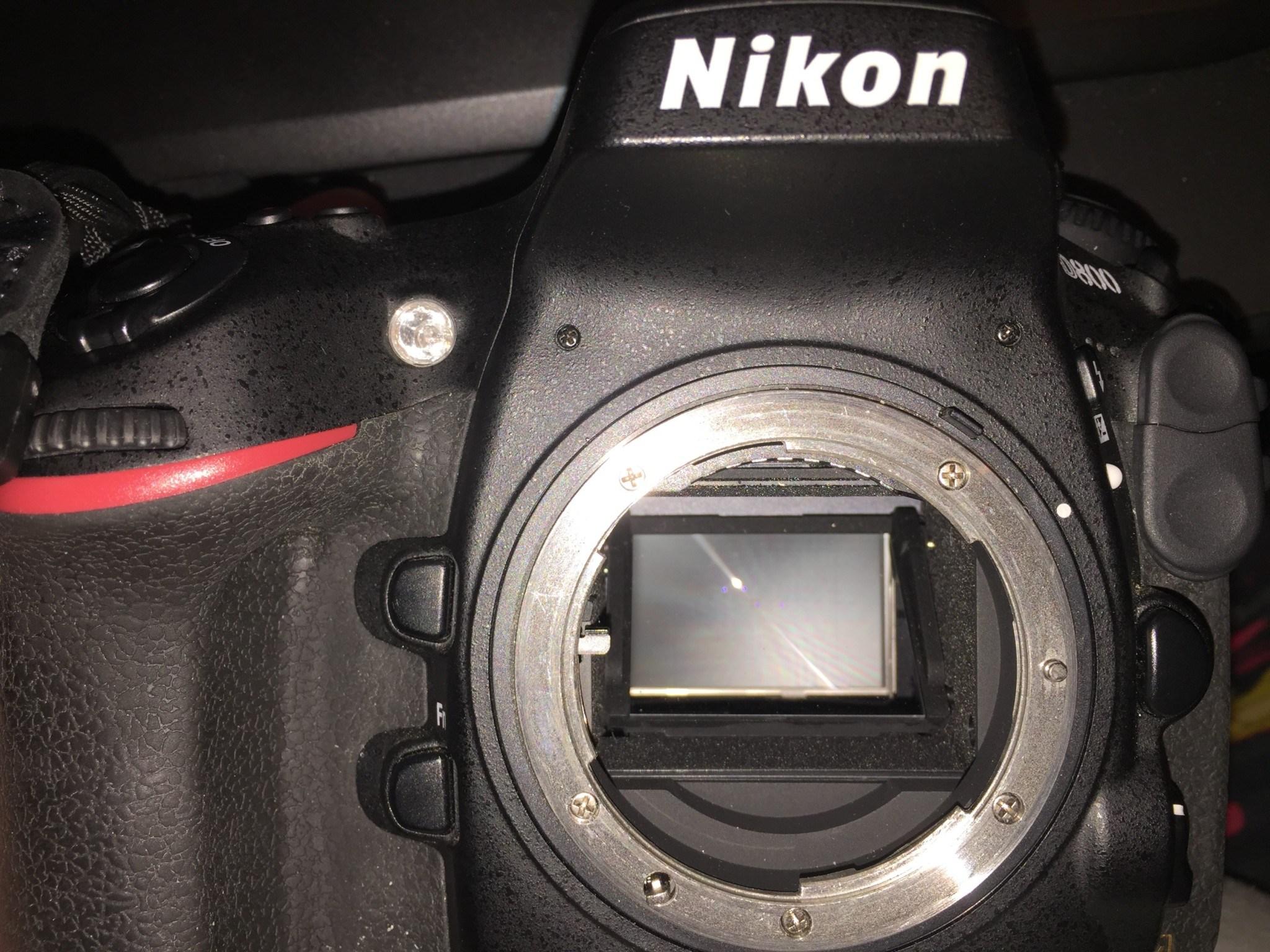 Nikon D800 Mirror