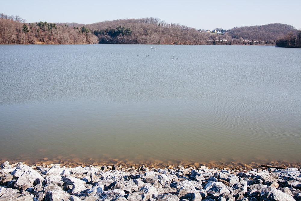 Reservoir, 2019