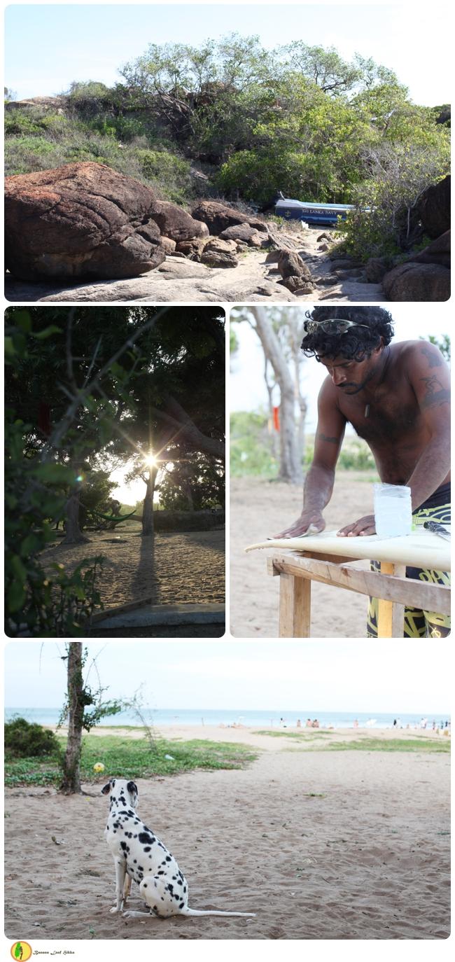 Surf tour Arugam Bay Sri Lanka