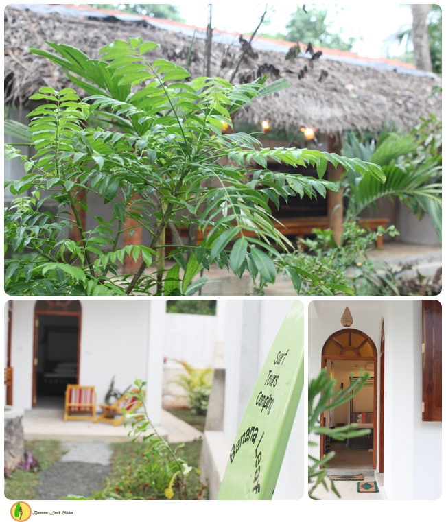 Banana Leaf hikkaduwa accommodation