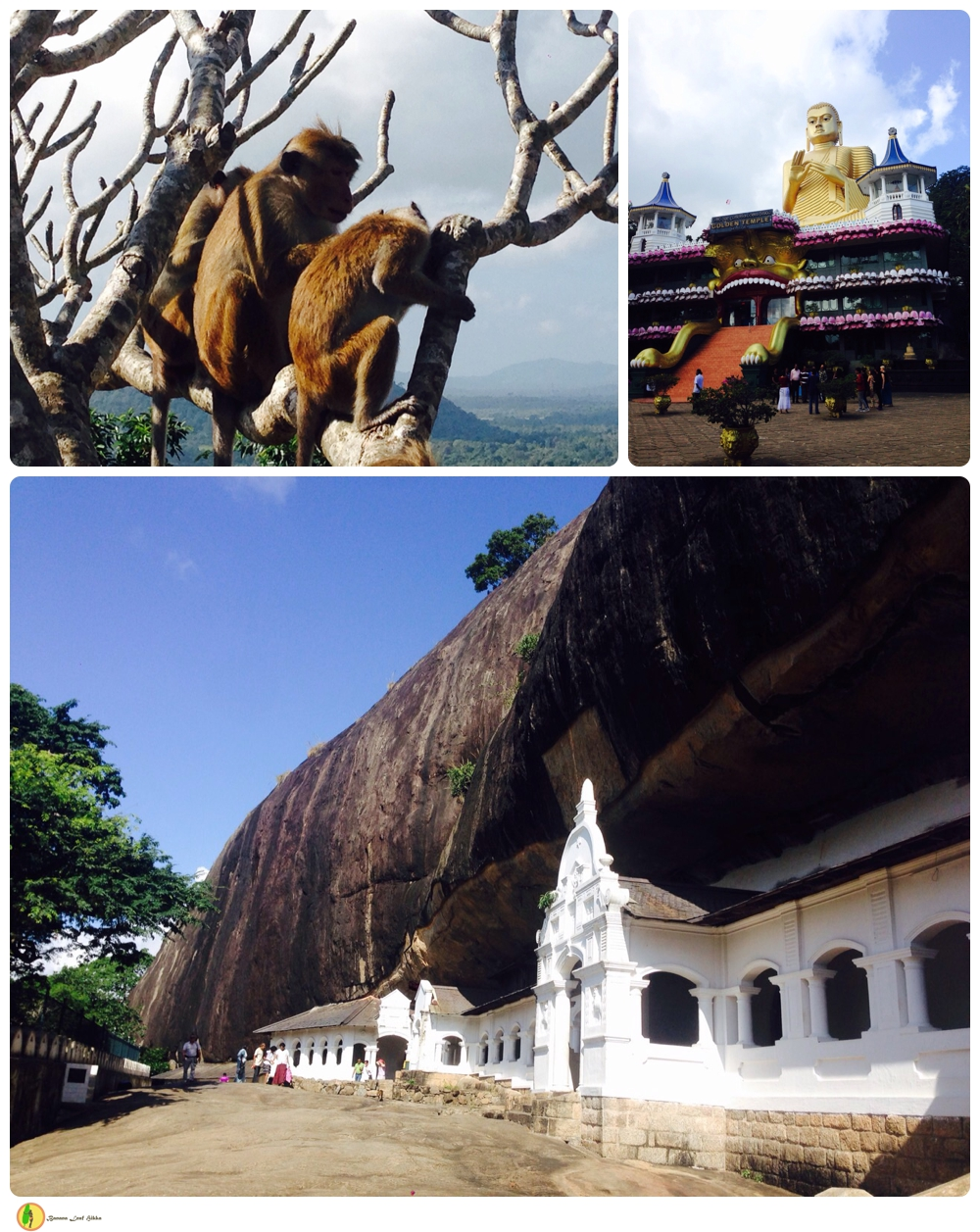 Dambulla temple Sri Lanka tour