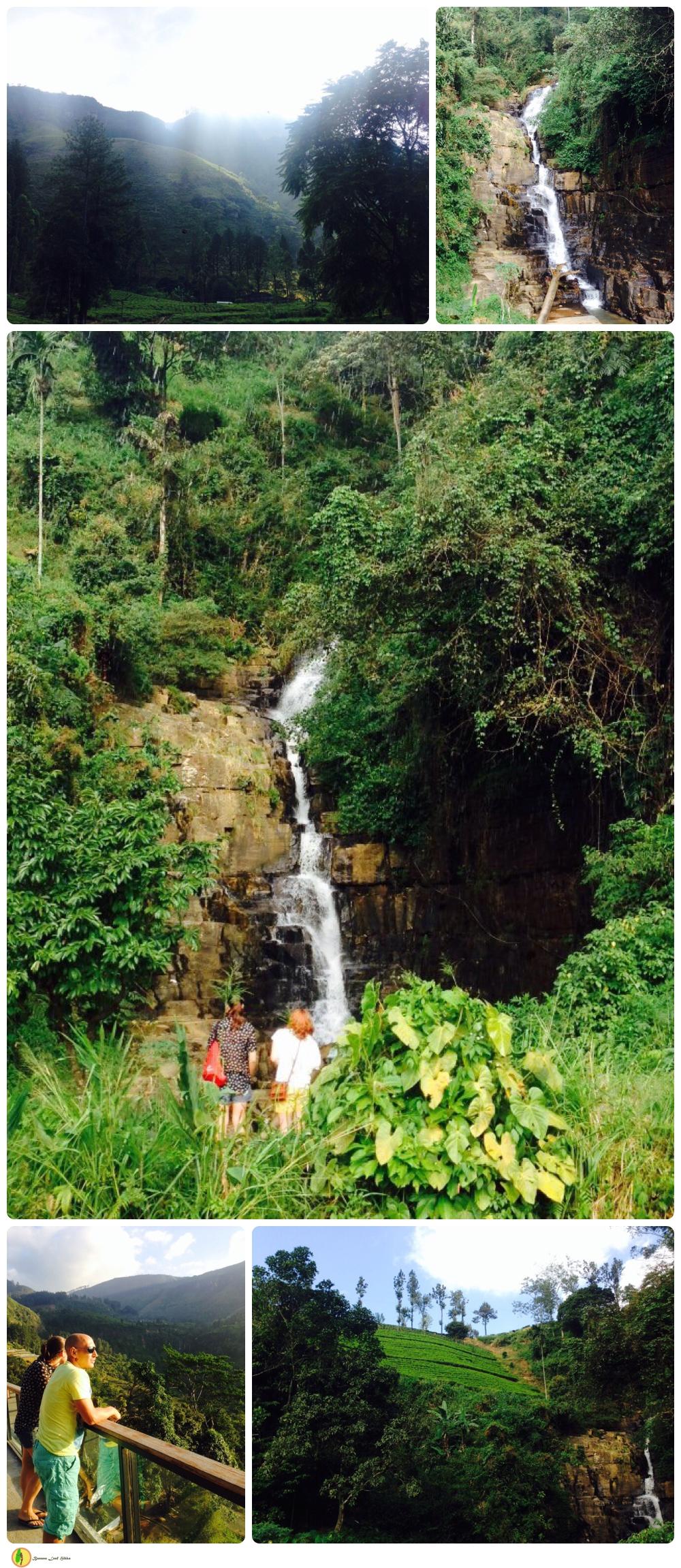 Banana Leaf tours, Sri lanka