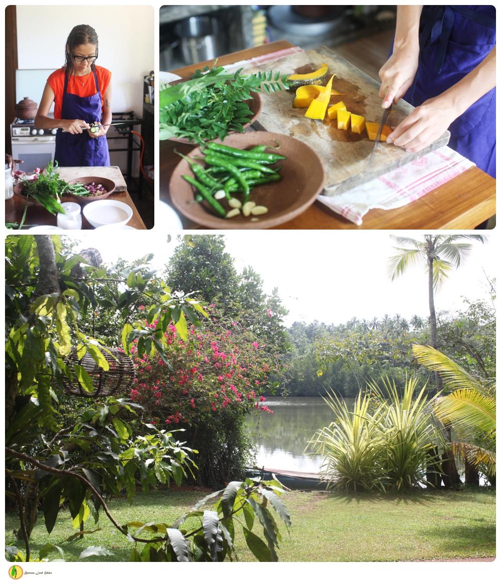 Magrovia restaurant Sri Lankan cookery Hikkaduwa