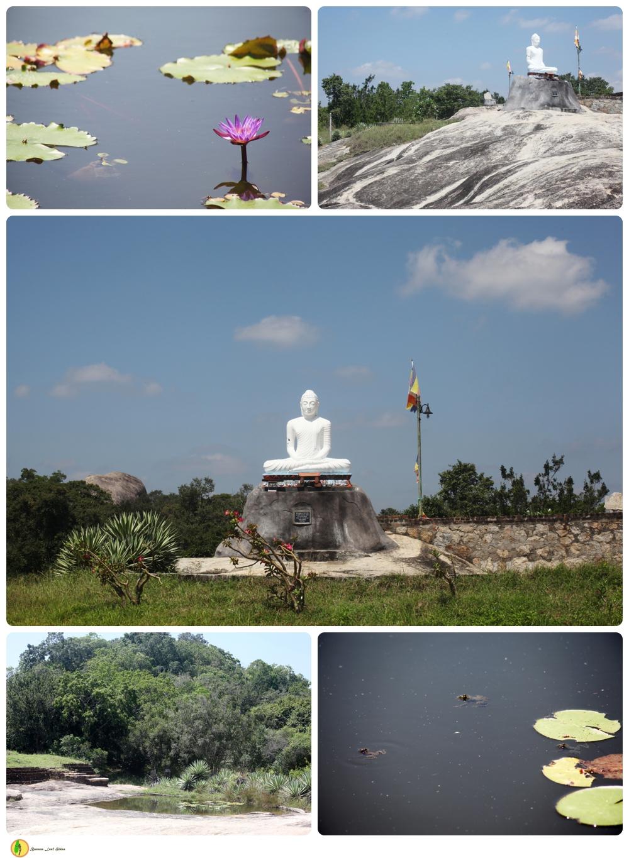 Kudumbigala Monastery Complex Sri Lanka