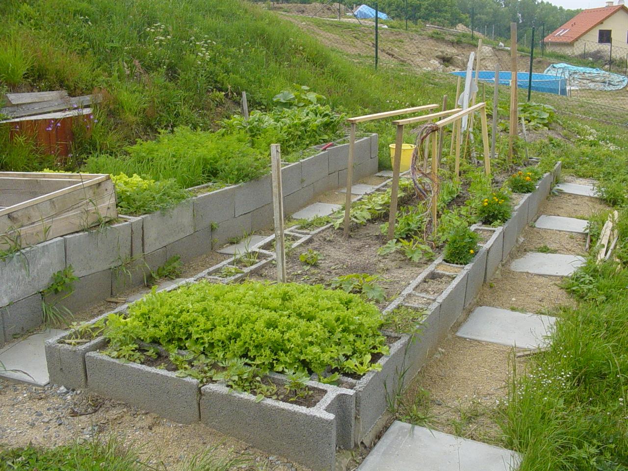 My herb garden when I started it ten years ago