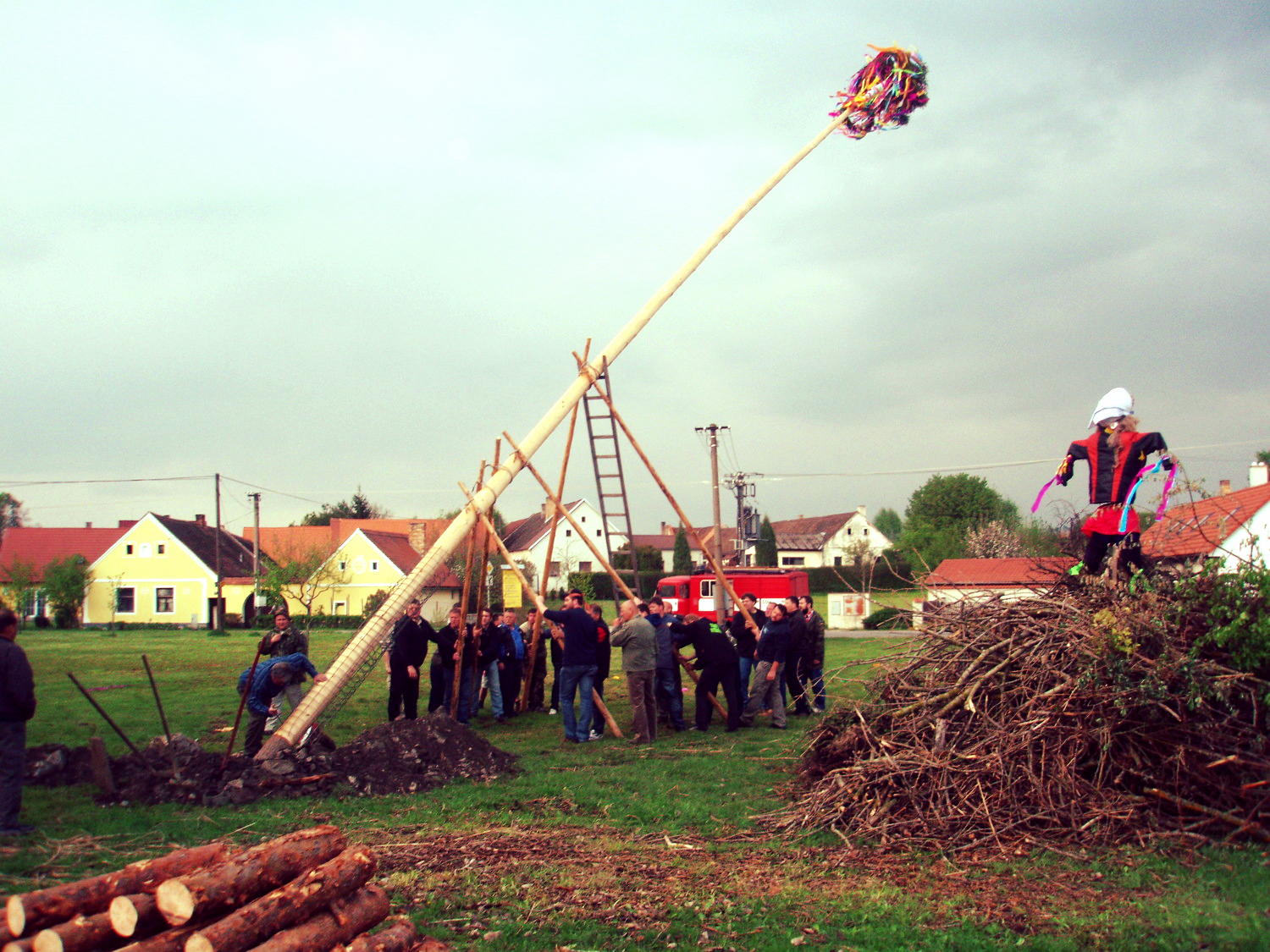 The men of Stribrec village raise the maypole next to the witch fire.