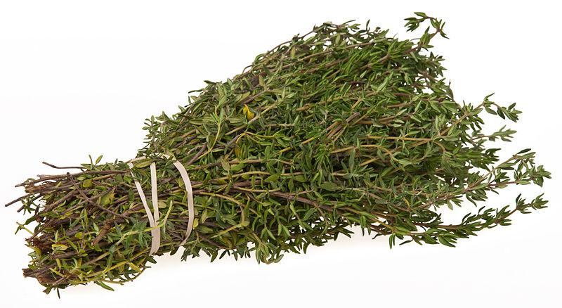 Bundle of thyme - public domain image