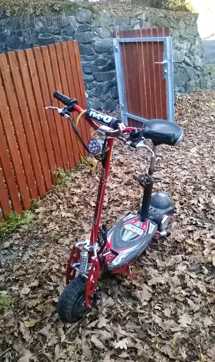 A picture of my actual famous scooter. Image by Arie Farnam