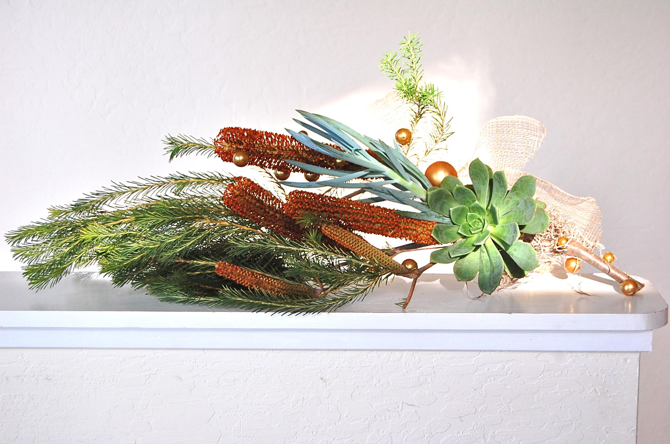 Banksia Branch