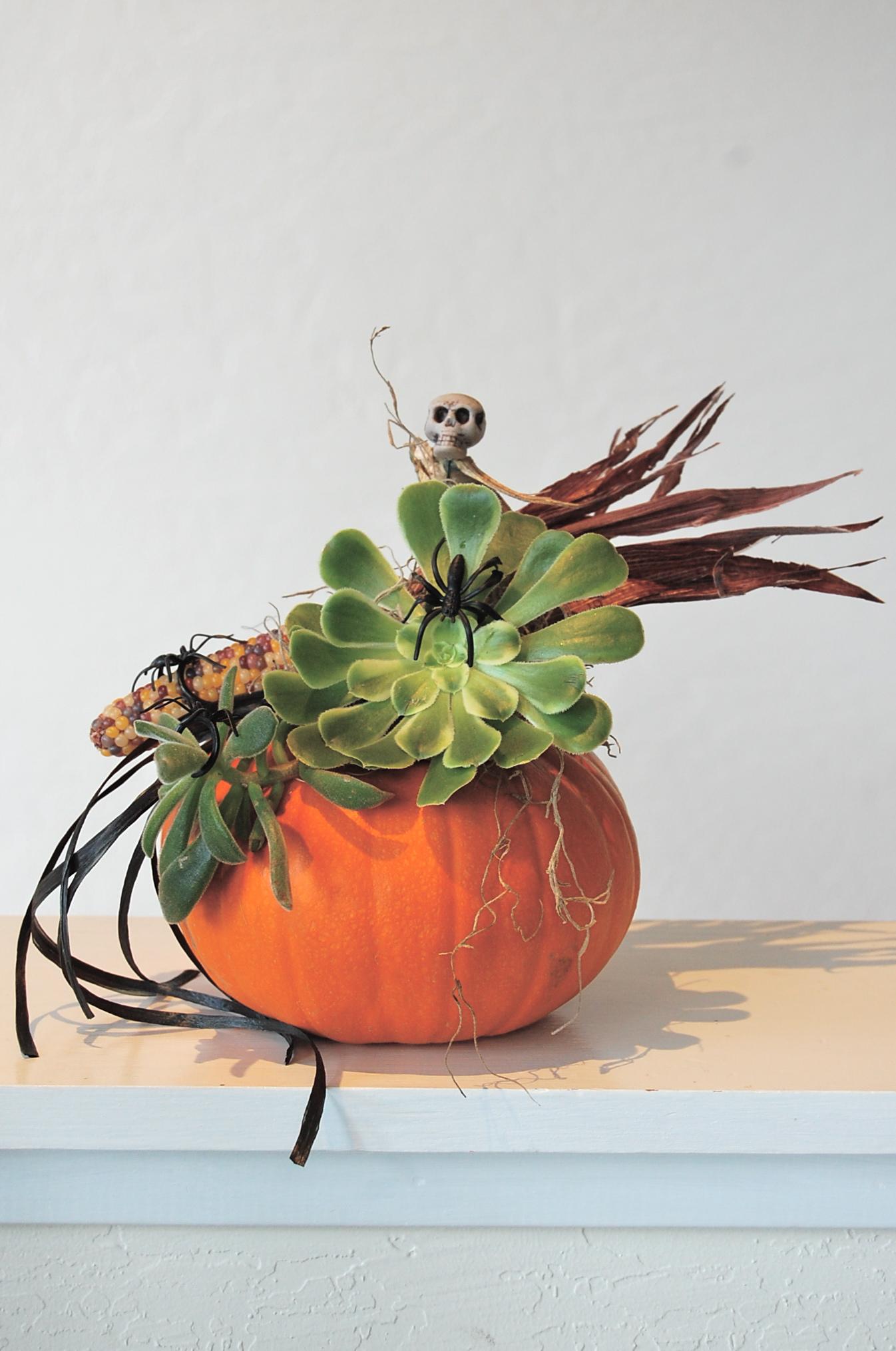 Halloween-Theme Pumpkin