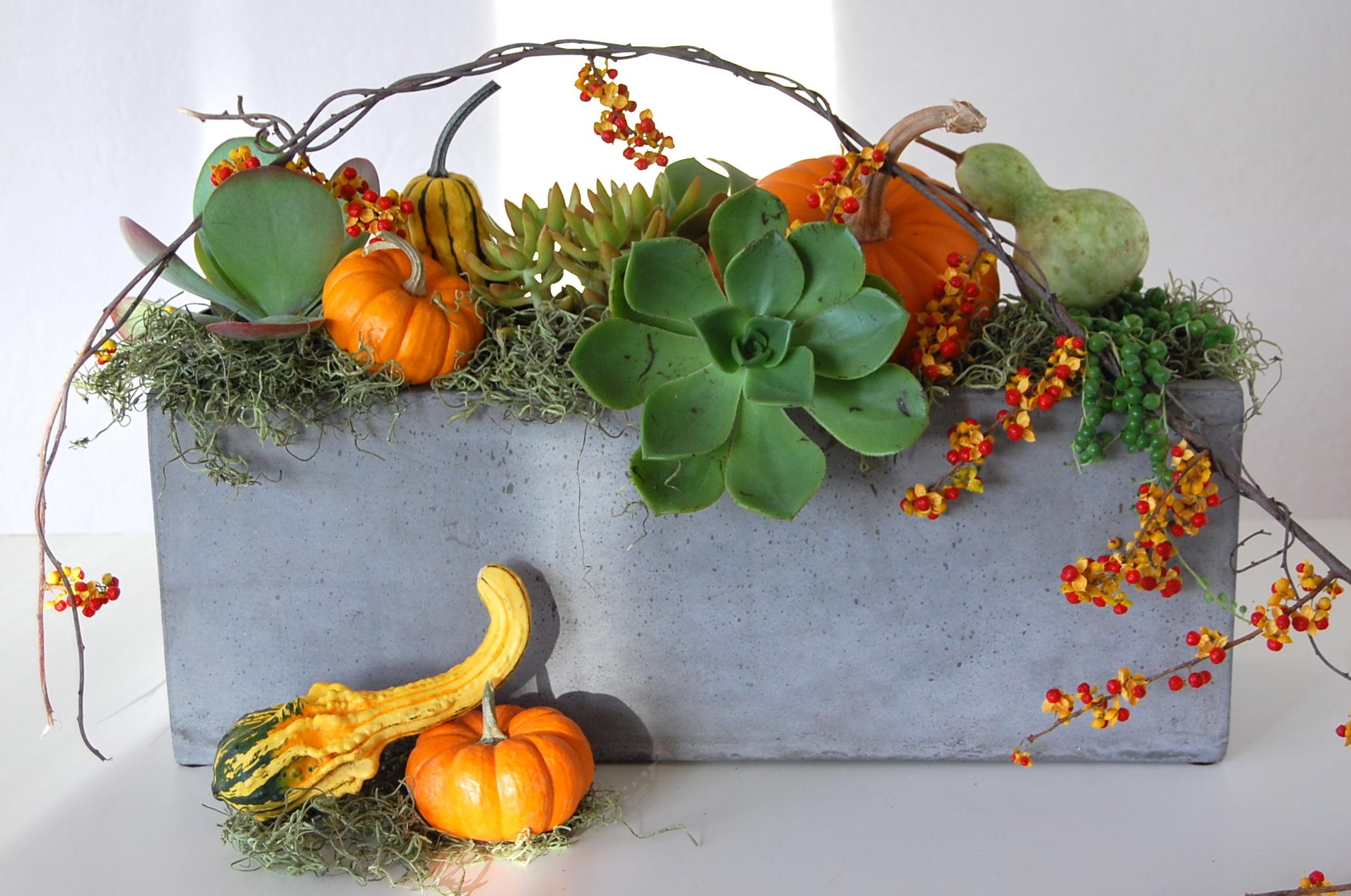 Thanksgiving Concrete Rectangle Centerpiece With Succulents, Pumpkins & Goards