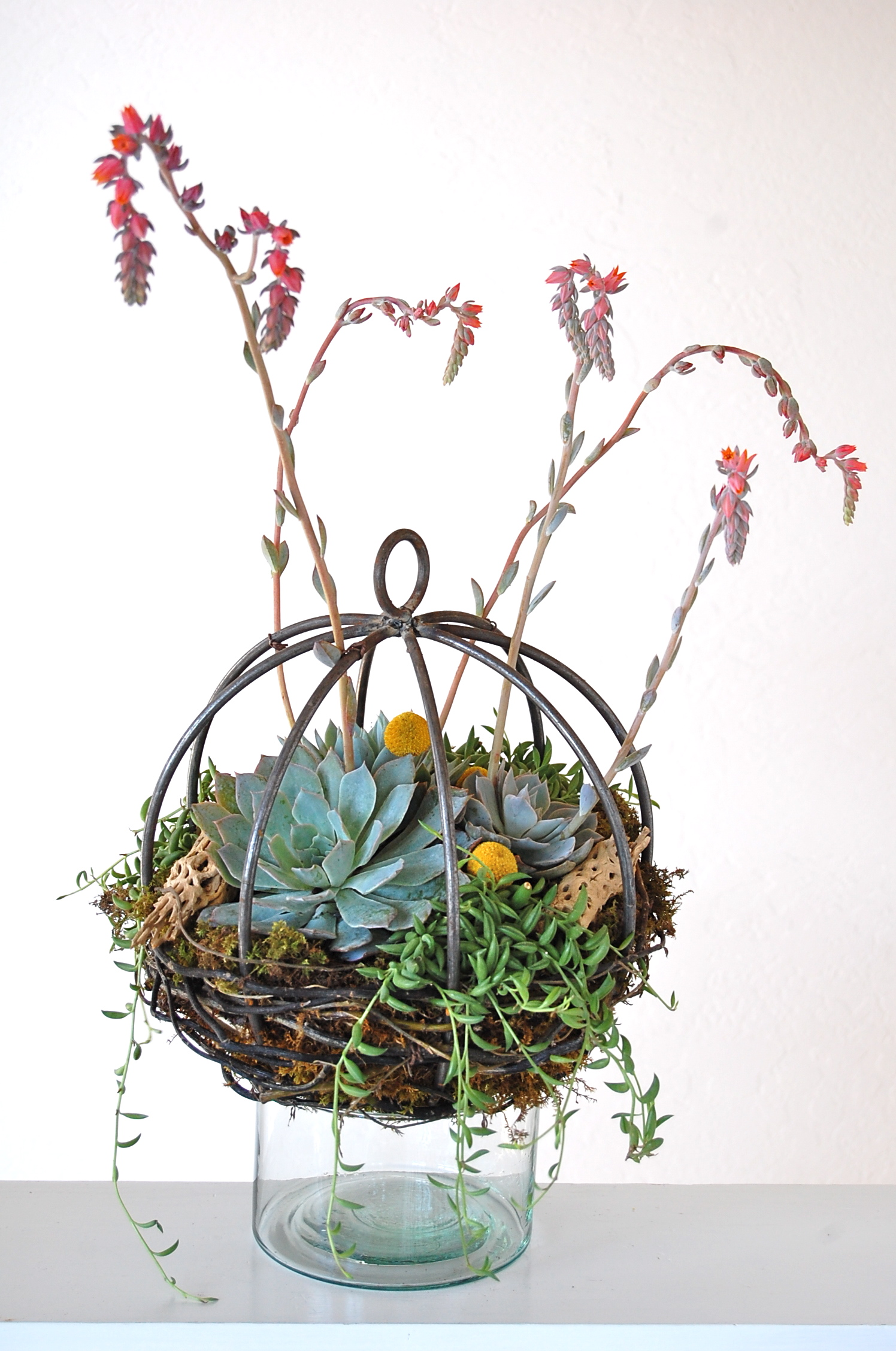 Small Metal Orb Centerpiece or Hanging Garden With Extension Hook
