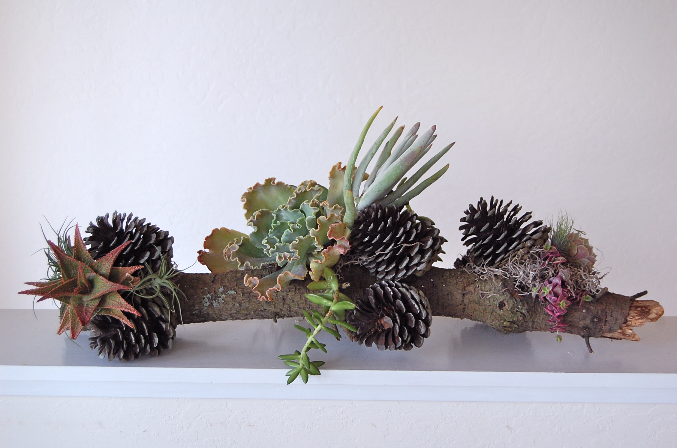 "MEDIUM PINECONE BRANCH    24""w x 11""h – $145."