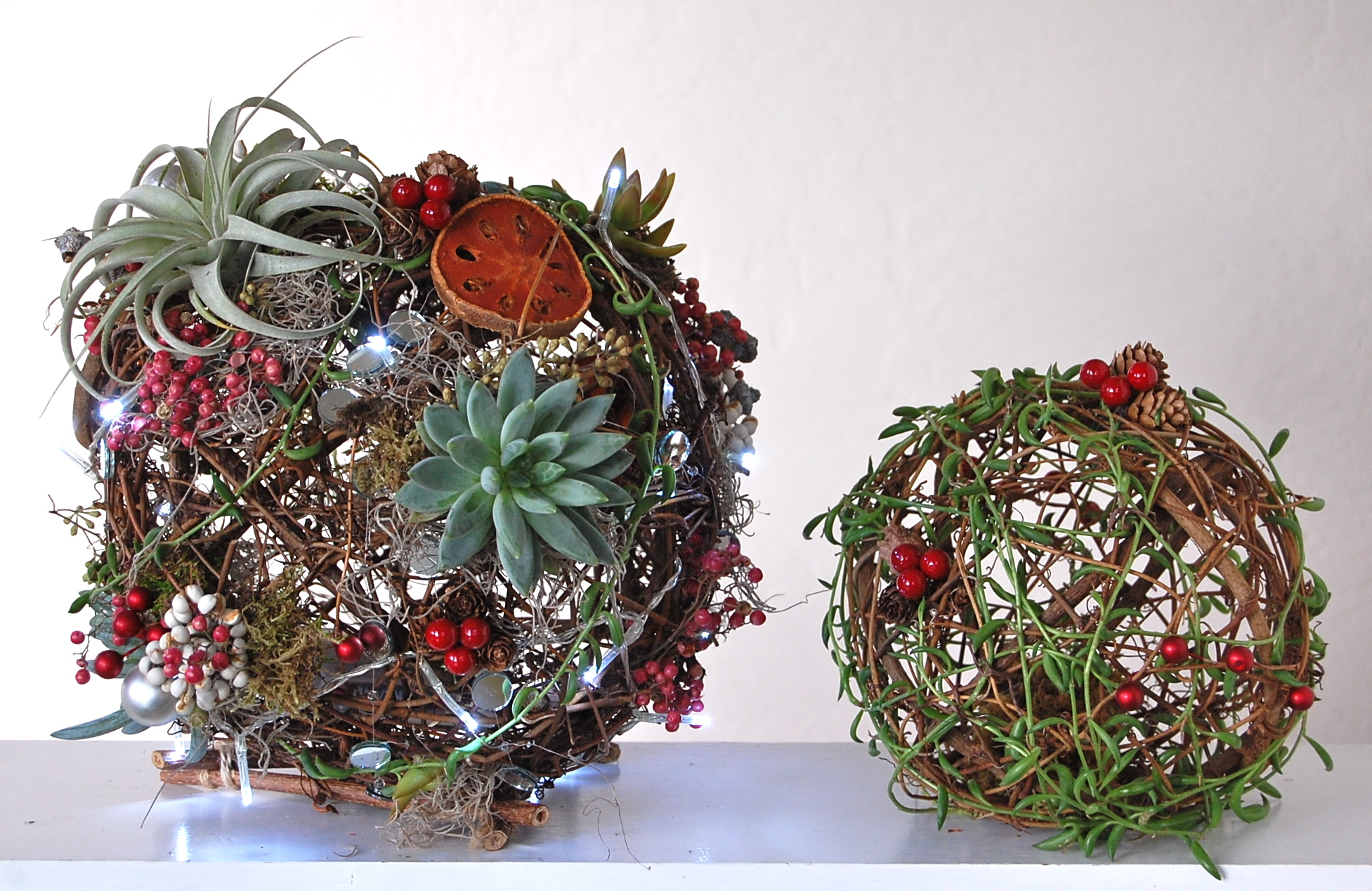 """TWIG ORBS- 10"""" & 8""""   10"""" with LED lights, succulents and air plants– $110. /8"""" with succulent trailer vines-- $40."""