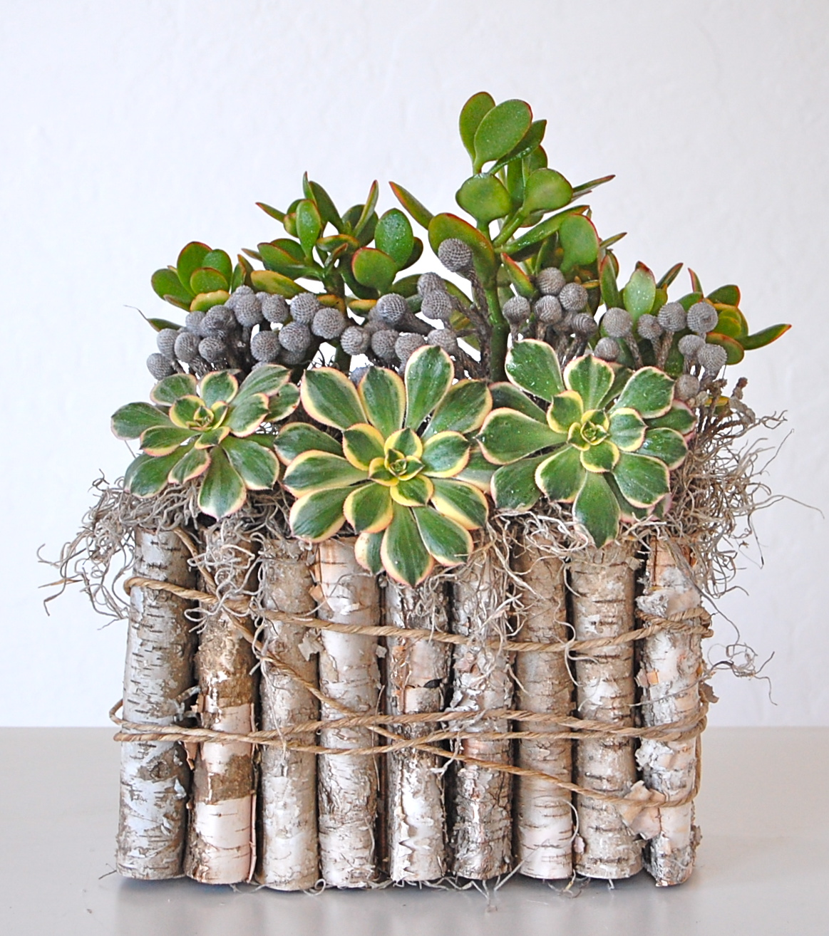 """FOLDED BIRCH BARK CONTAINER   11""""w x 21""""h – $90. (no longer available)"""