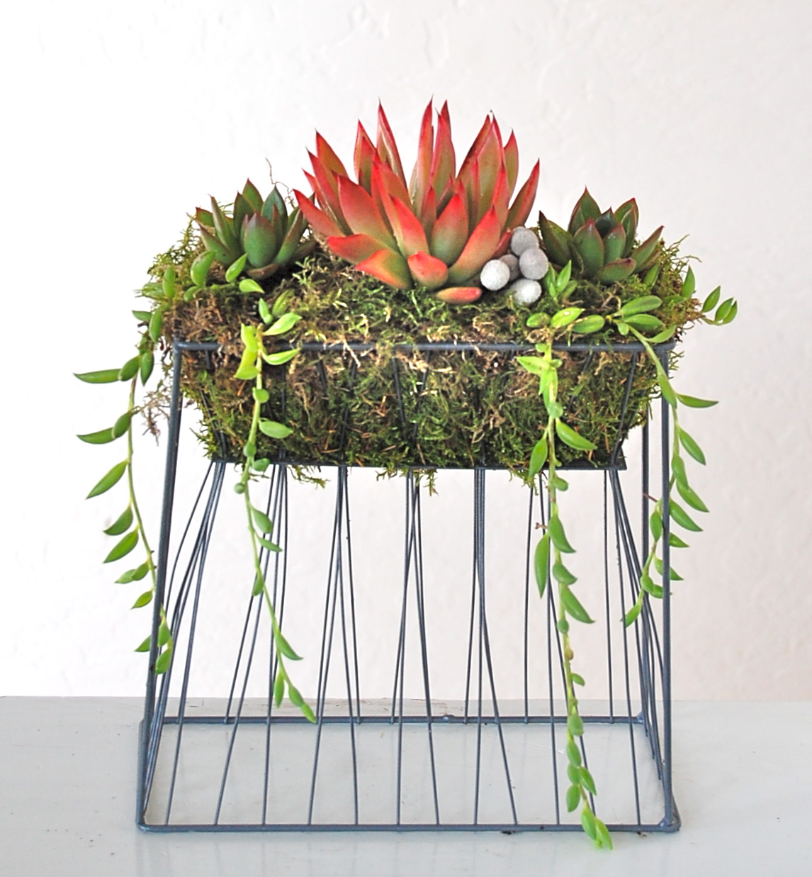 """SUSPENSION WIRE PLANTER  Small: 8.5""""w x 5""""d x 12""""h; Large (not shown): 11""""w x 5""""d x 12""""h"""