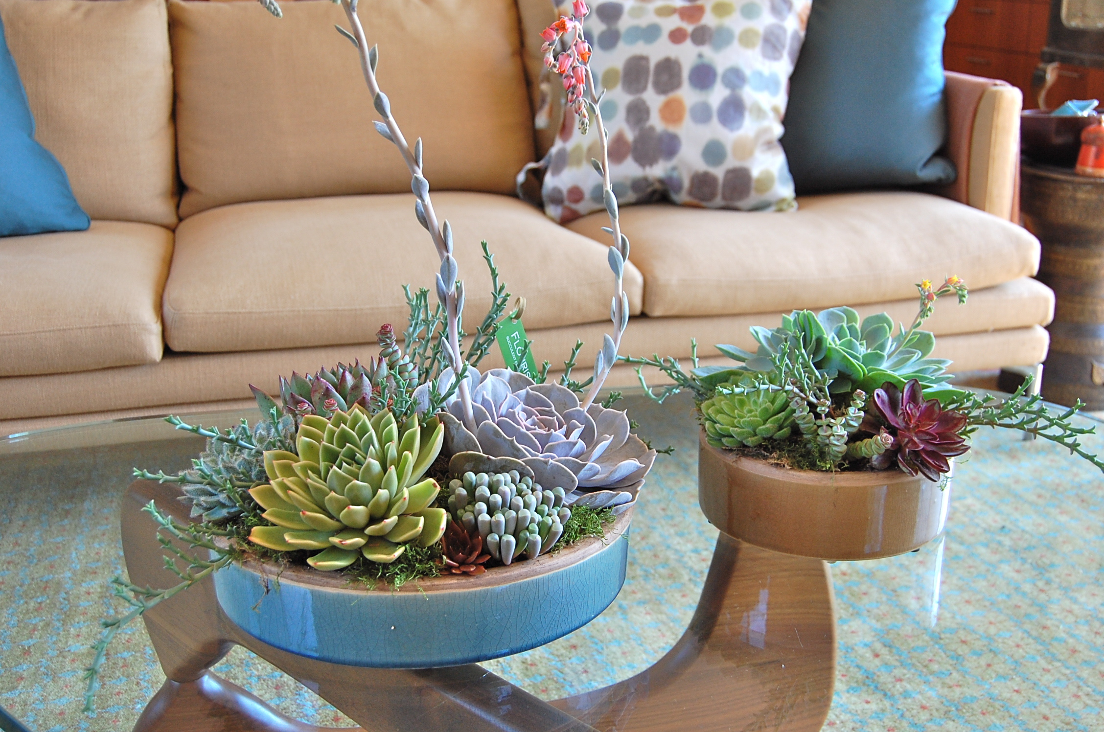 CUSTOM DESIGNED PLANTERS FOR FAMILY IN LARKSPUR, CA