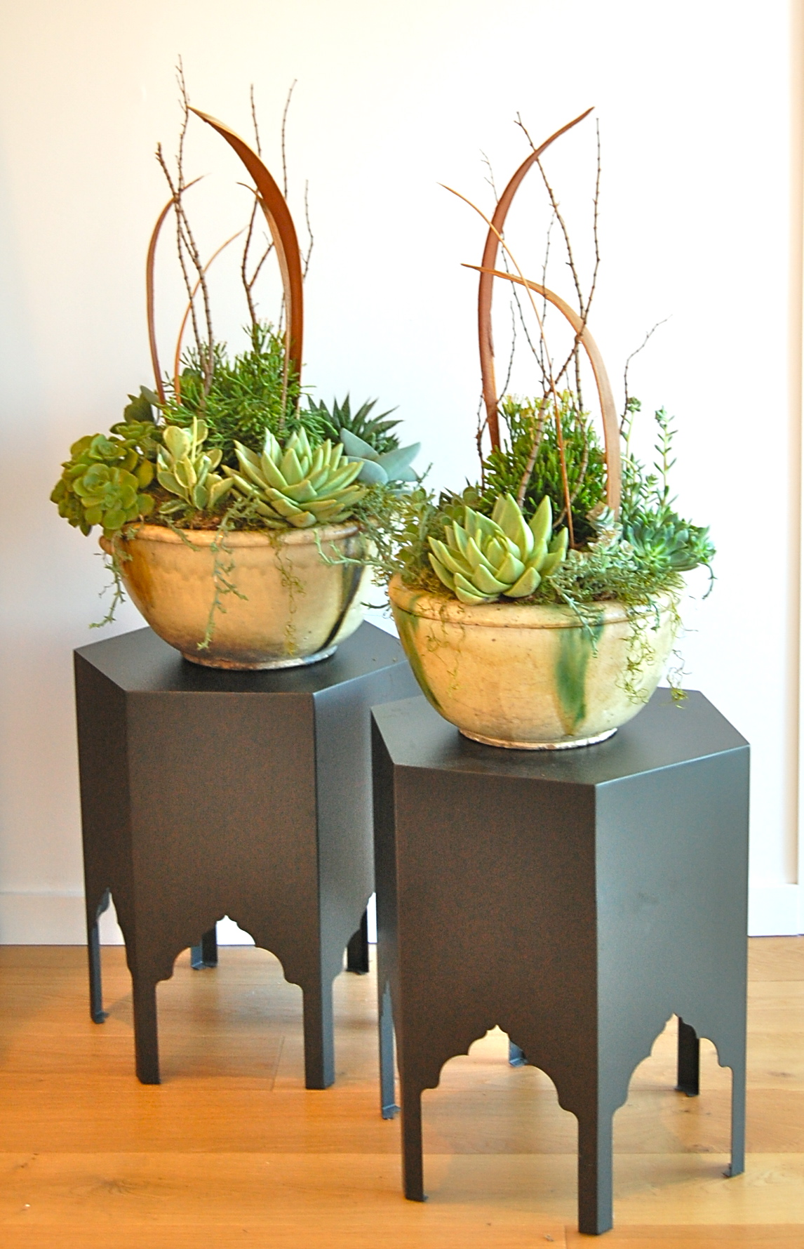 CUSTOM PLANTING IN ANTIQUE BOWLS IN CORTE MADERA, CA
