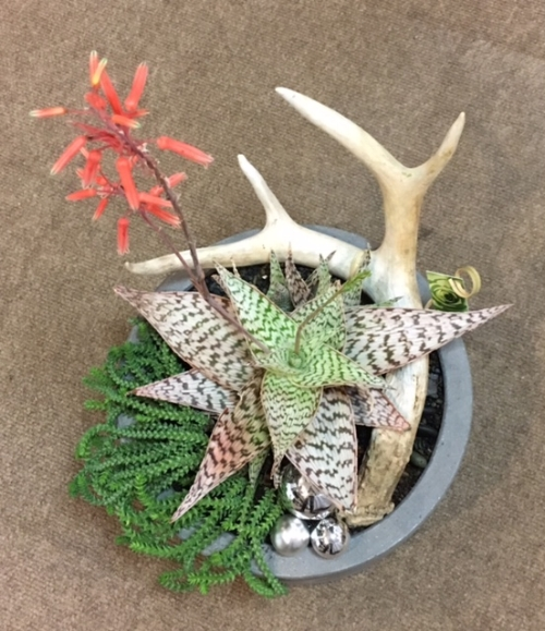 "CONCRETE CYLINDER POTS WITH ANTLER  11""w x 12""h  (Smaller size available)"